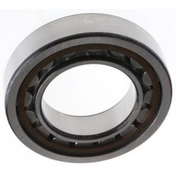 Sealed Full Ceramic Bearing 6003-2RS ZrO2/Si3n4 bearing 6003 size 17x 35x10mm